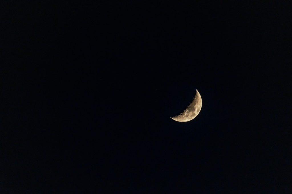 half moon, moon, night-4900302.jpg